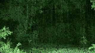 Larry Norman - Let The Rain Fall Down - [Lyrics]