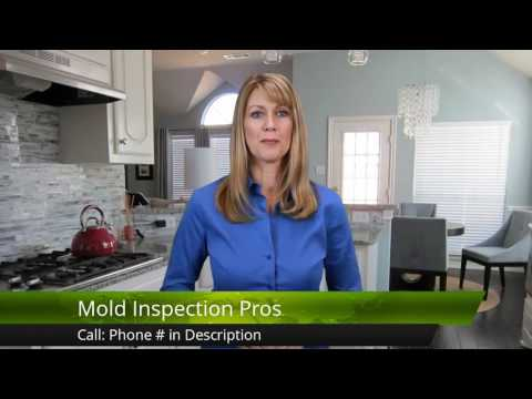 Mold Removal Cost<a href='/yt-w/YnjyDvwXTY8/mold-removal-cost.html' target='_blank' title='Play' onclick='reloadPage();'>   <span class='button' style='color: #fff'> Watch Video</a></span>