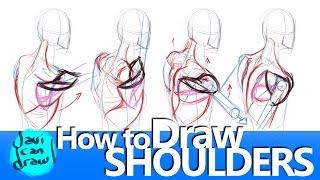 SHOULDER BLADES ARE THE SECRET FOR DRAWING SHOULDERS!