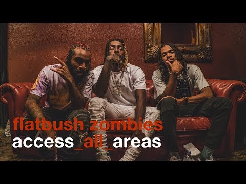 Flatbush Zombies - Access All Areas