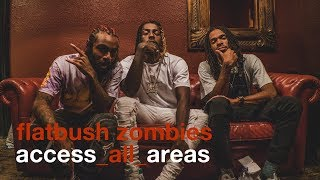 Flatbush Zombies - AAA