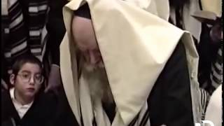 New Footage: Chol Hamoed with the Rebbe -  Pesach 5751