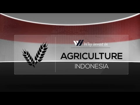 Agriculture  Indonesia - Why invest in 2015
