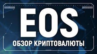 EOS обзор криптовалюты, анализ, аналитика, где хранить