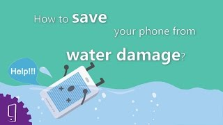 How to save your phone from water damage?