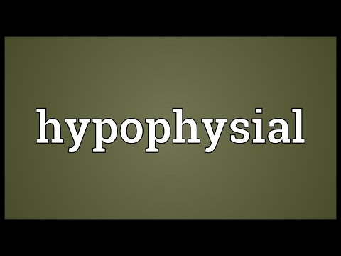 Header of hypophysial