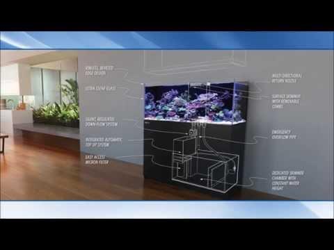 The Red Sea Reefer Aquariums from Complete Aquatics