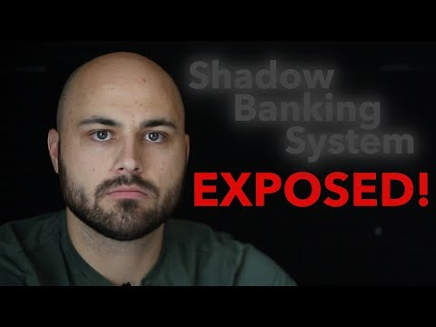 The Shadow Banking System Exposed and Explained