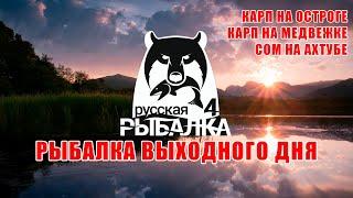 Карпы на Старом Остроге и Медвежке Сом на Ахтубе Русская Рыбалка 4