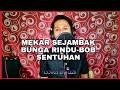 Mekar Sejambak Bunga Rindu Bob Sentuhan Busker Cover Versi By Azli  Mp3 - Mp4 Download