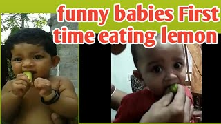 Babies eating lemon for first time 2019 | funny babies new videos