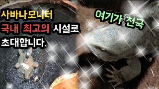사육(설치)_대형 도마뱀의 수영장을 만들어라!!