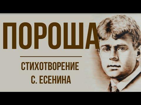 «Пороша» С. Есенин. Анализ стихотворения