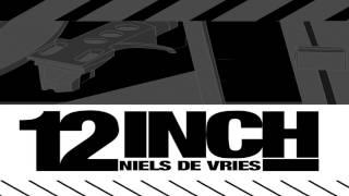 Niels De Vries - 12 Inch (Rocco Vs Bass-t Vs Pulsedriver Remix) (Dant3s Mashup)