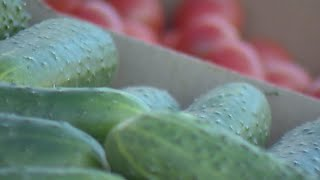 Крупнейший центр реализации плодоовощной продукции работает в новом формате