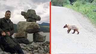 Amazing Secret Campsite & Blond Bear On Abandoned Backroad