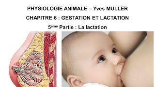 Chapitre 6-5 Le lait et la lactation