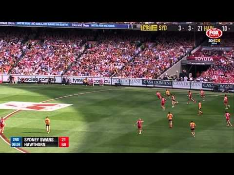 AFL 2014   Grand Final Re Call
