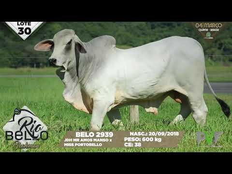 LOTE 30   BELO 2939