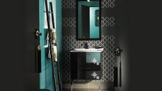 Accent Color for Gray and White Bathroom