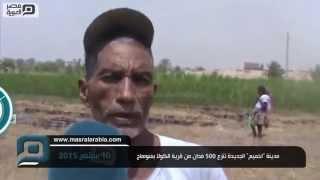 """مصر العربية    مدينة """"اخميم"""" الجديدة تنزع 500 فدان من قرية الكولا بسوهاج"""