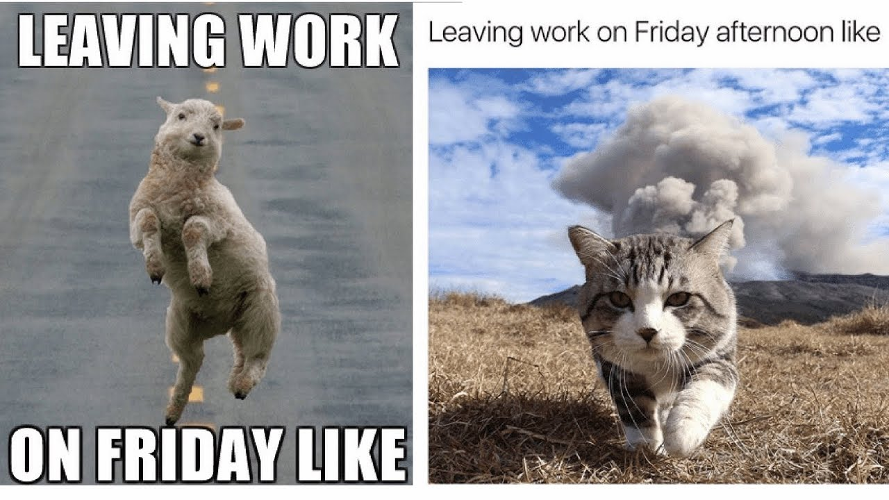 Leaving Work On Friday Meme Funny : Leaving work on friday meme youtube