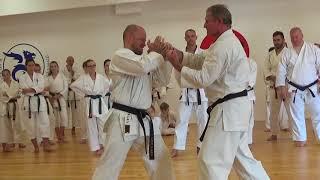 Goju Ryu Karate Do Seiwakai Seminar - Partizanske 02.06.2018 with Dr. Rastislav Mraz Kyoshi 7th DAN