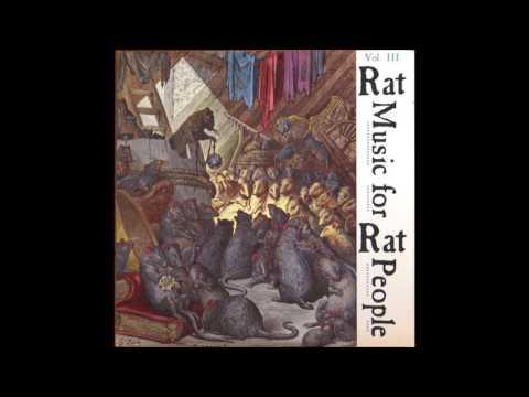 VVAA - Rat music for rat people Vol 3 LP (int Punk/HC comp)