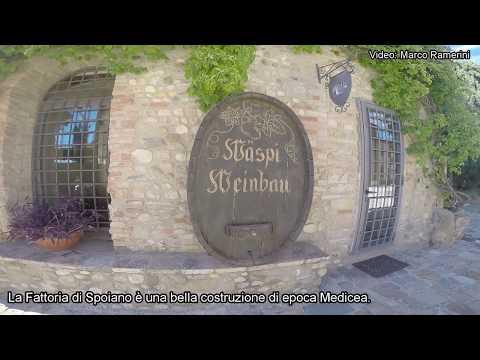 Passeggiata Nel Chianti: Barberino Val D'Elsa - Spoiano - Valle Dell'Agliena