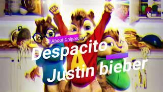 Justin Bieber- Luis Fonsi - Despacito ft. Daddy Yankee - chipmunk version