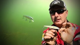 Fishing for Prespawn Bass with Jerkbaits - Everything you Need to Know