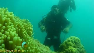 Scuba Diving at Andaman Nikobar Iceland