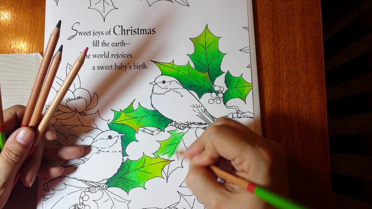 Coloring Book Holly Leaves Blending