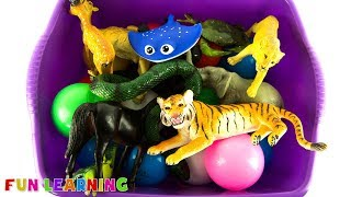 Learn Colors and Wild Zoo Animals For Kids with Educational Box of Toys