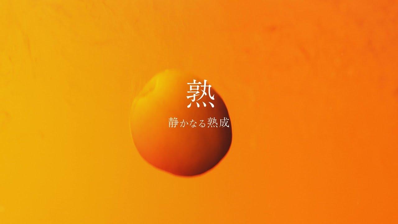 2020 チョーヤ 梅酒 女優 cm