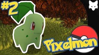 Пиксельмон [#2] — Неуловимый покемон