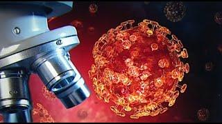 Hpv vakcina mellékhatások edények