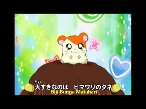Hamtaro Ost Indonesia