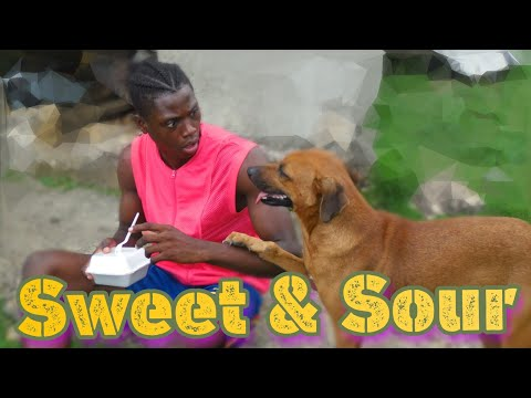 Sweet & Sour [ Fry Irish Comedy ]