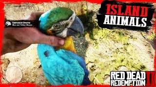 RDR2 Hunting and Skinning ISLAND Guarma Animals Gameplay🤠🤠🤠