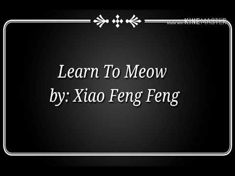 Learn To Meow Lyrics