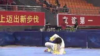 2010年全国武术套路锦标赛(传统)M14 003 男子象形拳  张耀文