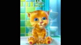 Котенок Рыжик делает послание!