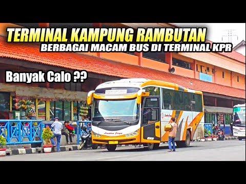 NONTON BIS di Terminal Tersibuk di JAKARTA, Terminal Bus Kampung Rambutan Mp3