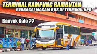 NONTON BIS di Terminal Tersibuk di JAKARTA, Terminal Bus Kampung Rambutan