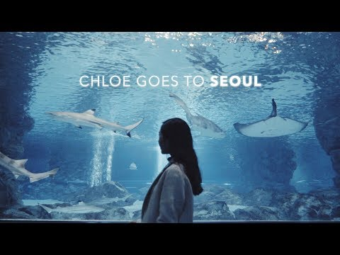 Đi Seoul Cùng Chloe ♡ Seoul Travel Diary with CHARIS | Chloe Nguyen