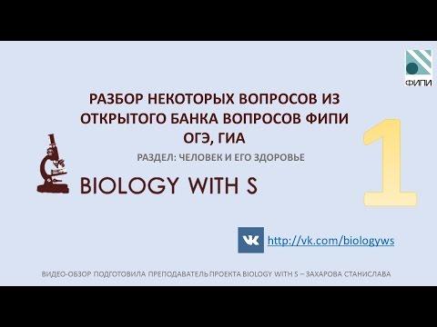 Разбор вопросов ОГЭ, ГИА (ФИПИ) от проекта Biology with S. ЧЕЛОВЕК И ЕГО ЗДОРОВЬЕ Ч.1.