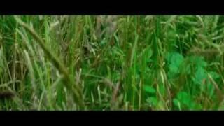 """Vorsicht Sehnsucht""-(HD Official Trailer)Kinostart: 02.04.2010"
