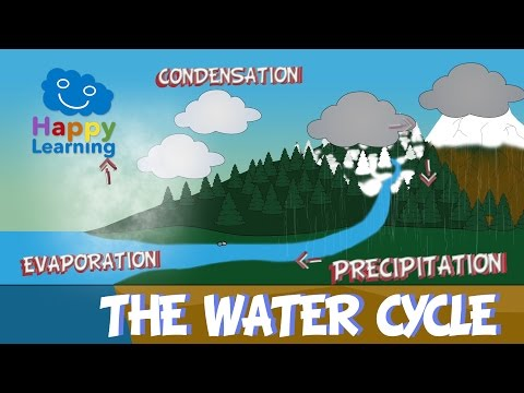 The Water Cycle | El ciclo del agua en Inglés