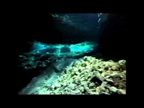 CENOTE FREE DIVING RIVIERA MAYA MEXICO